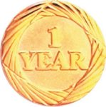 1 Year Pin Chenille Lapel Pins