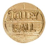 Gold Volleyball Metal Chenille Letter Insignia Custom Lapel Pins
